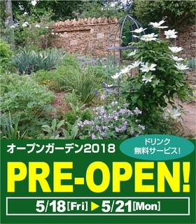 pre-open02.jpg